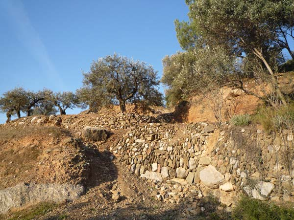excursions a peu puig cendros oliveres